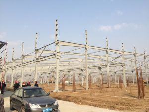 Large Span Steel Structure Workshop (ZY365) pictures & photos