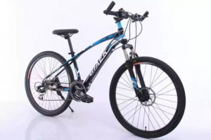 High Quality Mountain Bike Series (MTB-011) pictures & photos