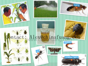 Insecticide 93% Tc Mosquito Larvicide Allethrin R - D - Trans - Allethrin pictures & photos