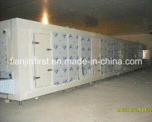 Shrimp Fish Fillet Seafood Tunnel Quick Freezer IQF Quick Freezer pictures & photos