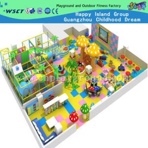 Kids Indoor Playground for Amusement Park (IPE-Zhu) pictures & photos
