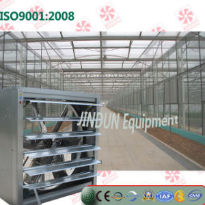 Heavy Hammar Greenhouse Ventiliation Cooling Fan for Poultry House