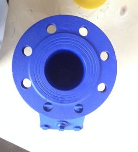 DIN Cast Iron Flange Type Y Strainer pictures & photos