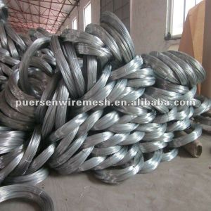 Electro/Hot-DIP Galvanized Wire pictures & photos