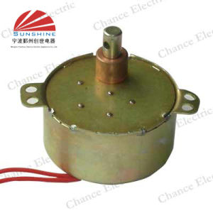 Synchronous Motor (49TY)