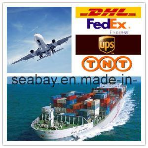 Best International Logistics Service From China to Middle East pictures & photos