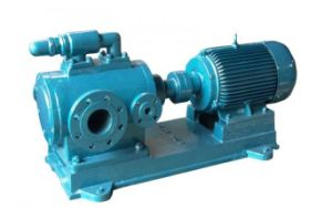 Sn Series with Motor Three Screw Pump pictures & photos
