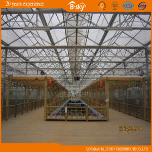 Beautiful Appearance High Quality Multi-Span Glass Greenhouse pictures & photos