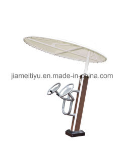 Galaxy Outdoor Fitness Equipment Taiji Wheel pictures & photos