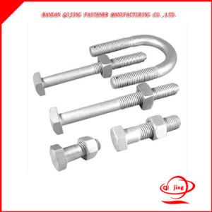 Hex Bolts/Carriage Bolt / Flange Bolt / T Head Bolt / Guardrail Bolt / U Bolt / Stud Bolt /Anchor Bolt pictures & photos