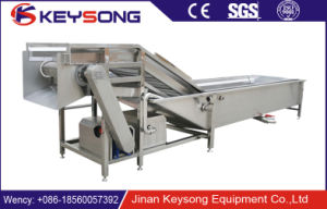High Effective Industrial Bubble Fruit Vegetable Washing Machine pictures & photos