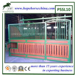 Horse Stalls for China pictures & photos