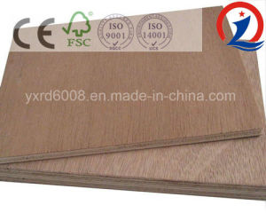 Commercial Plywood Ordinary Plywood for Furniture pictures & photos