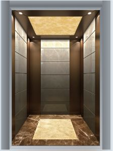 Bronze Brushed Stainless Steel Home Lift Passenger Elevator pictures & photos