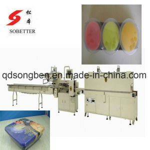 Shrink Tunnel for Auto Packaging Machine pictures & photos