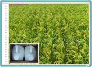 Chlormequat Chloride 50% SL Plant Growth Regulator Liquid Growth Promoter pictures & photos