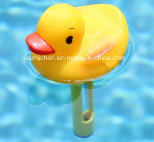 Swimming Pool Thermometer pictures & photos