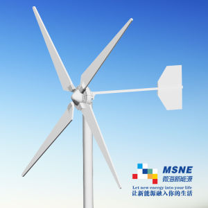 5000W Wind Turbine Solar Panel for Individual House