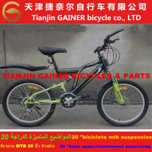 "Gainer 20"" Full Suspension MTB Bicycle with 21sp Stable Quality pictures & photos"