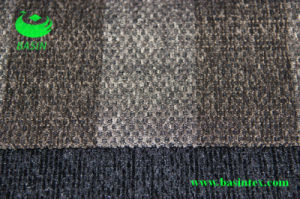 Polyester Jacquard Chenille Sofa Fabric (BS7011b) pictures & photos