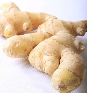 2017 New Air-Dried Ginger with High Quality pictures & photos