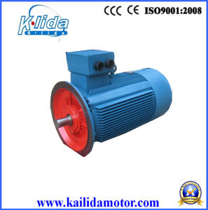 0.25 Kw 8 Pole Electric Motor, Y2-80m2-8-B5 pictures & photos