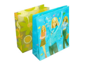 PVC Gift Bag, Plastic Shopping Bag, Cosmetic Bag