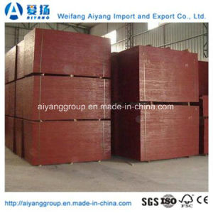 Melamine Glue Africa Market Concrete/Formwork/Shuttering Film Faced Plywood pictures & photos