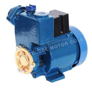 Peripheral Pump (GP125A) pictures & photos