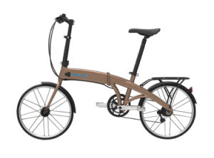 Newest Folding Electric Bike Foldable E Bike Brown Black E-Bike Inside Battery Samsung 36V 48V pictures & photos