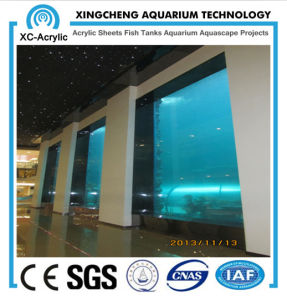 Fish Tank Wall/Fiberglass Fish Tank/Glass Aquariums pictures & photos