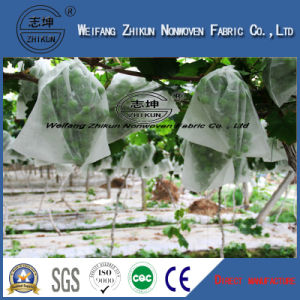 PP Spunbond Nonwovens for Agriculture Frost Cover pictures & photos