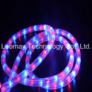 AC230V LED Neon Rope Light Y3 Flex LED Bulb Light pictures & photos