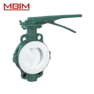 API609 Lined Butterfly Valve (DN40-DN1200) pictures & photos