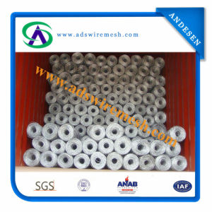 Electro Galvanized Hex Wire Netting/Hexagoanl Wire Mesh pictures & photos