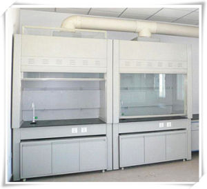 Bsc Series Clean Biological Safety Cabinet pictures & photos