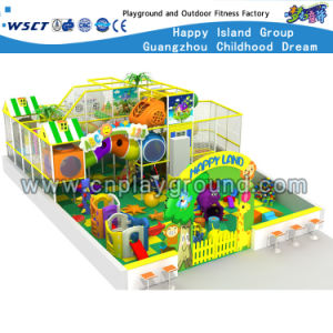 Kids Indoor Playground with Plstic Toys (H15-6004) pictures & photos