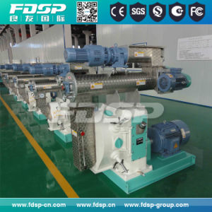 Professional Supply Pet Feed Pellet Equipment pictures & photos