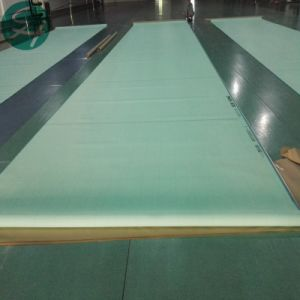 Hot Sales Polyester Forming Fabrics pictures & photos