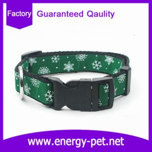 OEM Pet Products Dog Collar Quality Garanteed pictures & photos