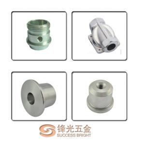 CNC Turning Parts and CNC Part China F176 pictures & photos