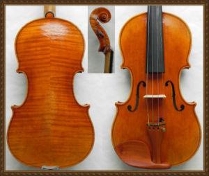 Soloist Violin! Hand Made! Oil Varnish Violin (Zh230)