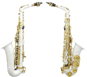 New Professional Gold&Silver&Nickle Plated Eb Alto Sax Saxophone (WSS-896)
