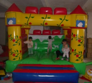 Inflatable Castle Slide, Inflatable Mini Bouncer pictures & photos
