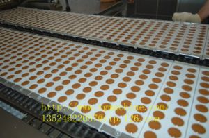 Automatic Toffee Candy Depositing Machine with Servo Control pictures & photos