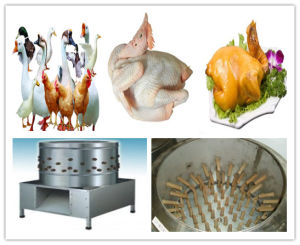 Chicken Plucking Machine Poultry Feather Removel Machine pictures & photos