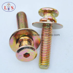 Flat Head Bolt with Plain Washer and Spring Waser pictures & photos