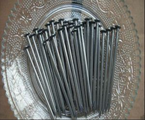 Construction Common Wire Nail/2inch Polished Common Steel Nails pictures & photos