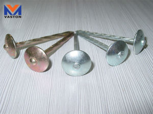 Galvanized Umbrella Head Roofing Nail pictures & photos