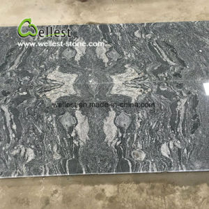 Vein Cut Grey Granite Medallion for Flooring pictures & photos